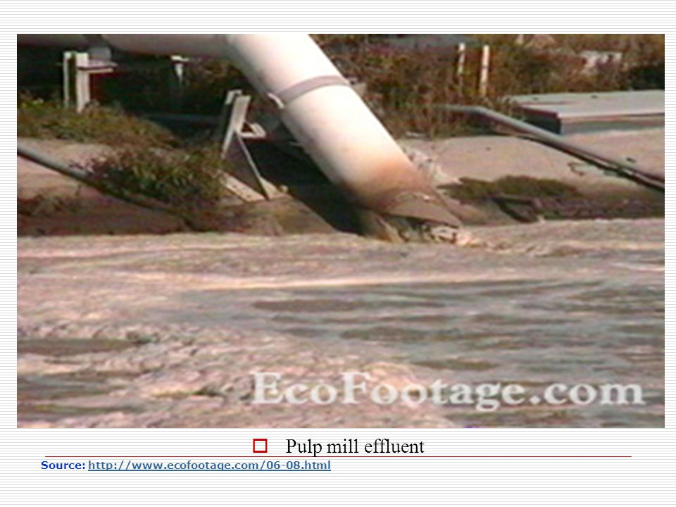 Pulp mill effluent Source: http://www.ecofootage.com/06-08.html