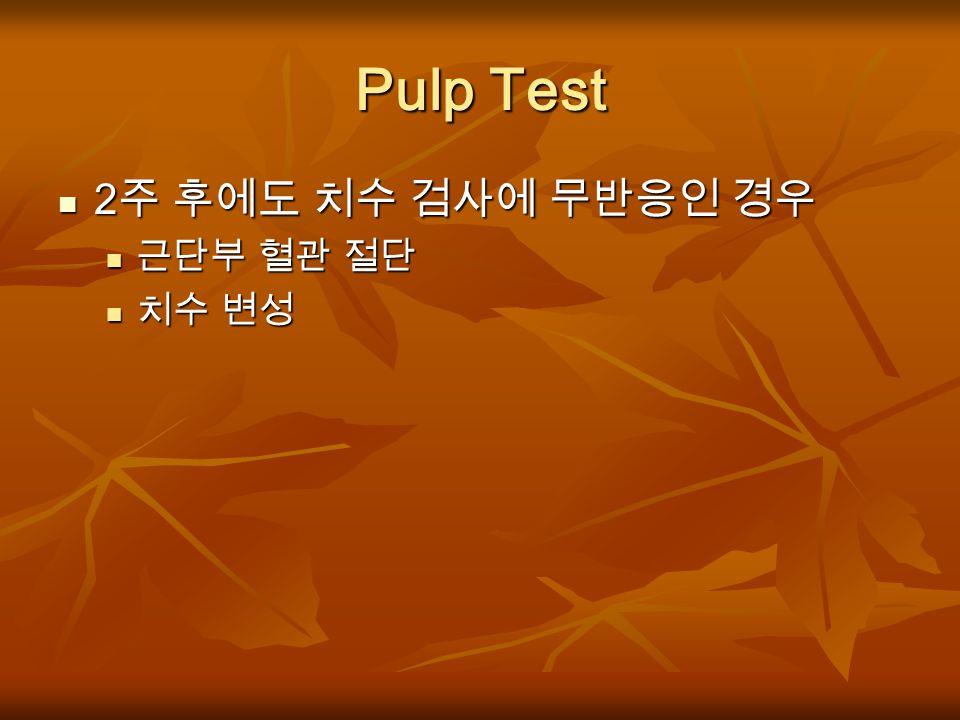 Pulp Test 2주 후에도 치수 검사에 무반응인 경우 근단부 혈관 절단 치수 변성