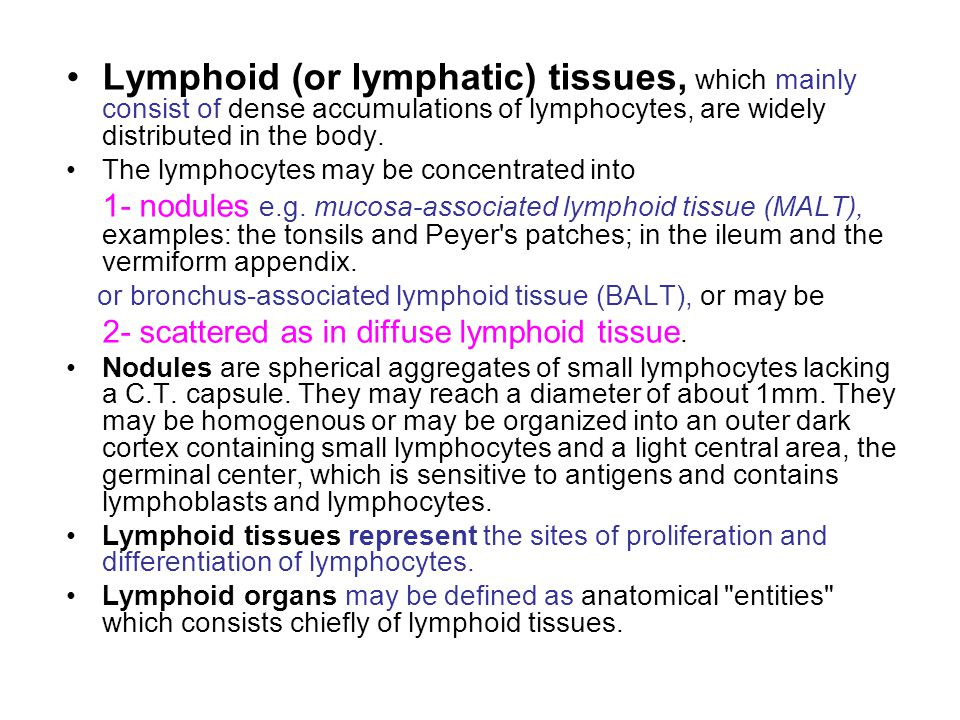 Lymphoid (or lymphatic) tissues, which mainly consist of dense accumulations of lymphocytes, are widely distributed in the body.