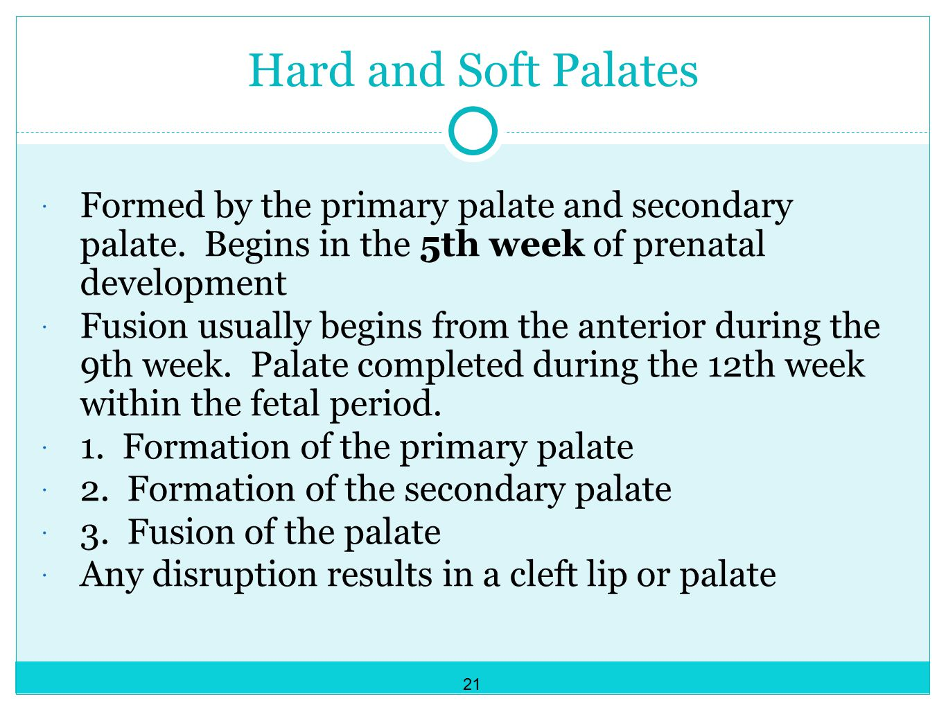 Hard and Soft Palates Formed by the primary palate and secondary palate. Begins in the 5th week of prenatal development.