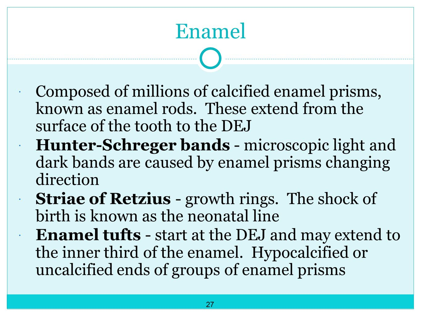 Enamel Composed of millions of calcified enamel prisms, known as enamel rods. These extend from the surface of the tooth to the DEJ.