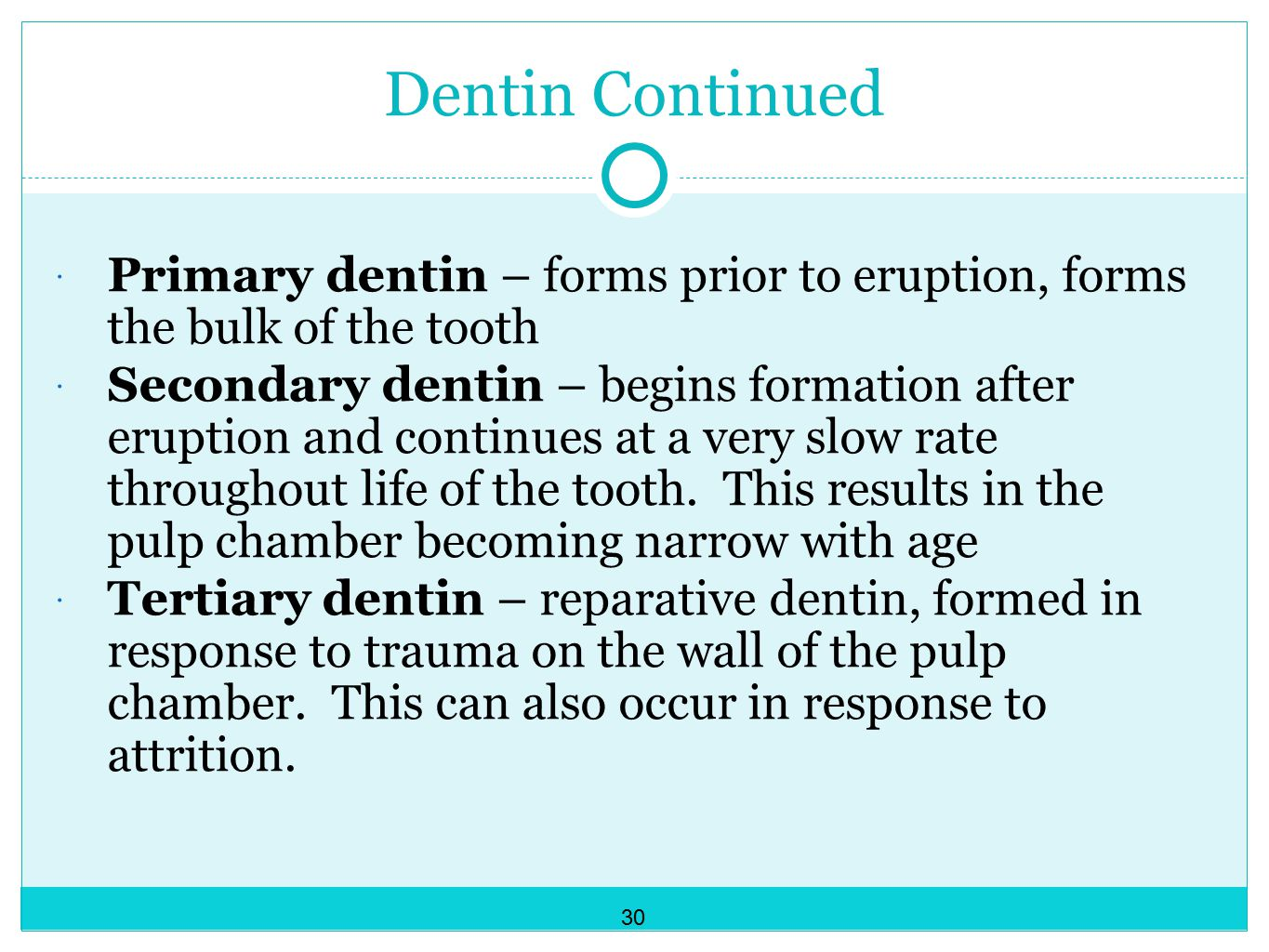 Dentin Continued Primary dentin – forms prior to eruption, forms the bulk of the tooth.
