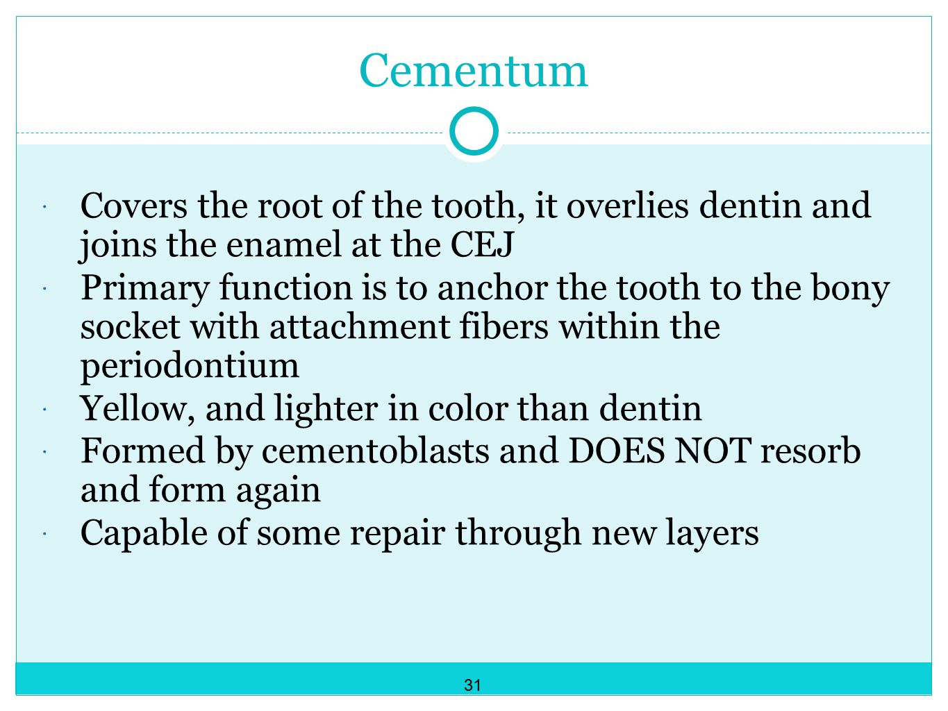 Cementum Covers the root of the tooth, it overlies dentin and joins the enamel at the CEJ.