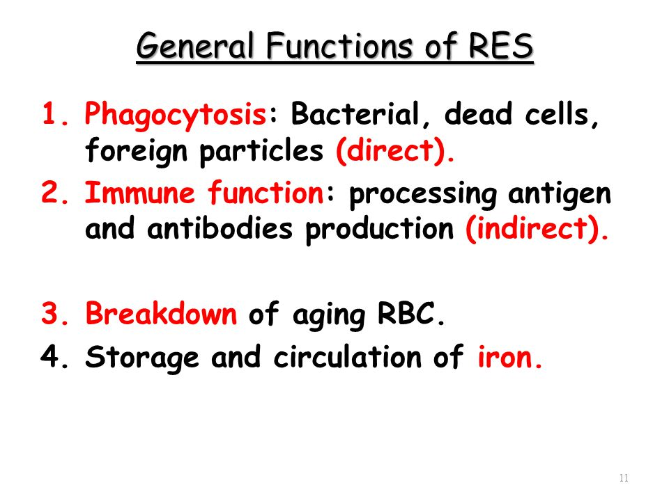 General Functions of RES