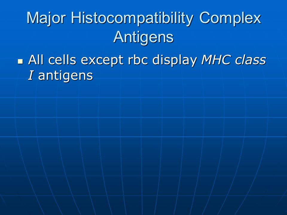 Major Histocompatibility Complex Antigens