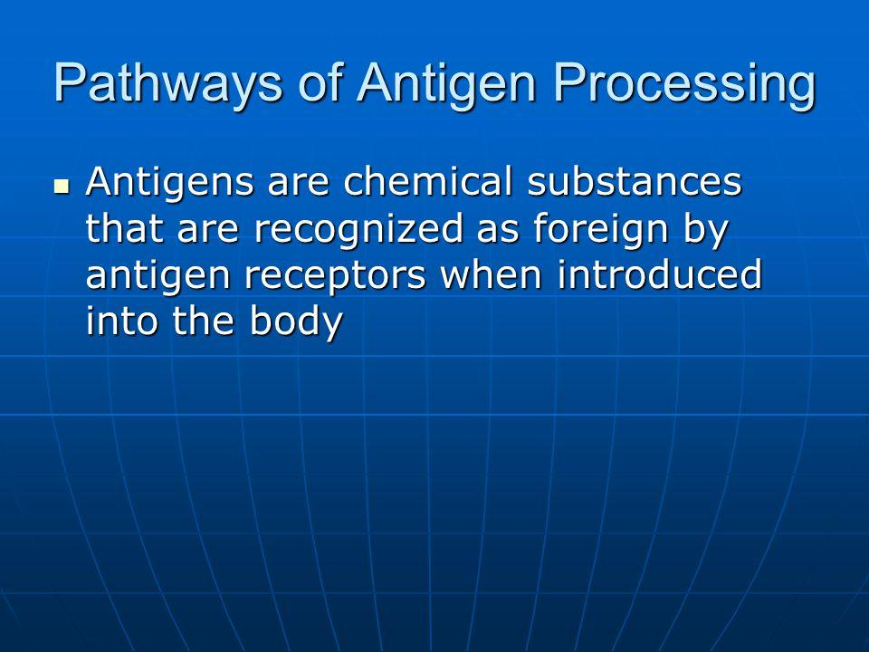 Pathways of Antigen Processing