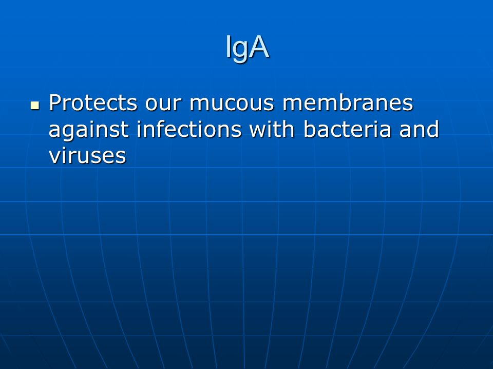 IgA Protects our mucous membranes against infections with bacteria and viruses