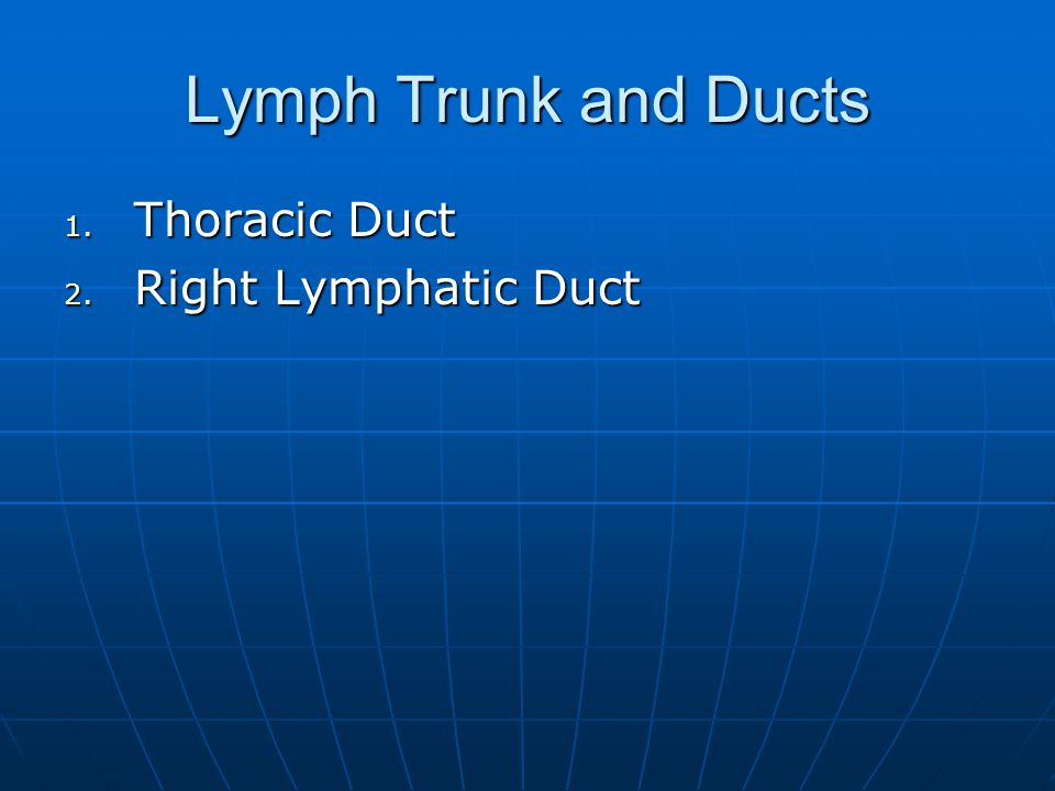 Lymph Trunk and Ducts Thoracic Duct Right Lymphatic Duct
