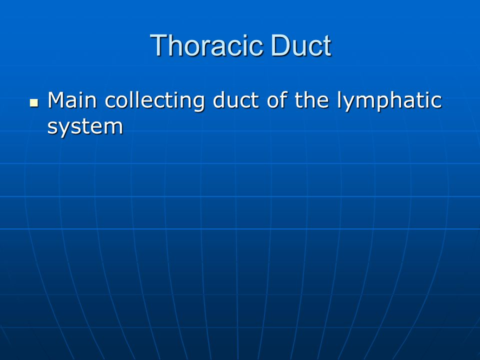 Thoracic Duct Main collecting duct of the lymphatic system