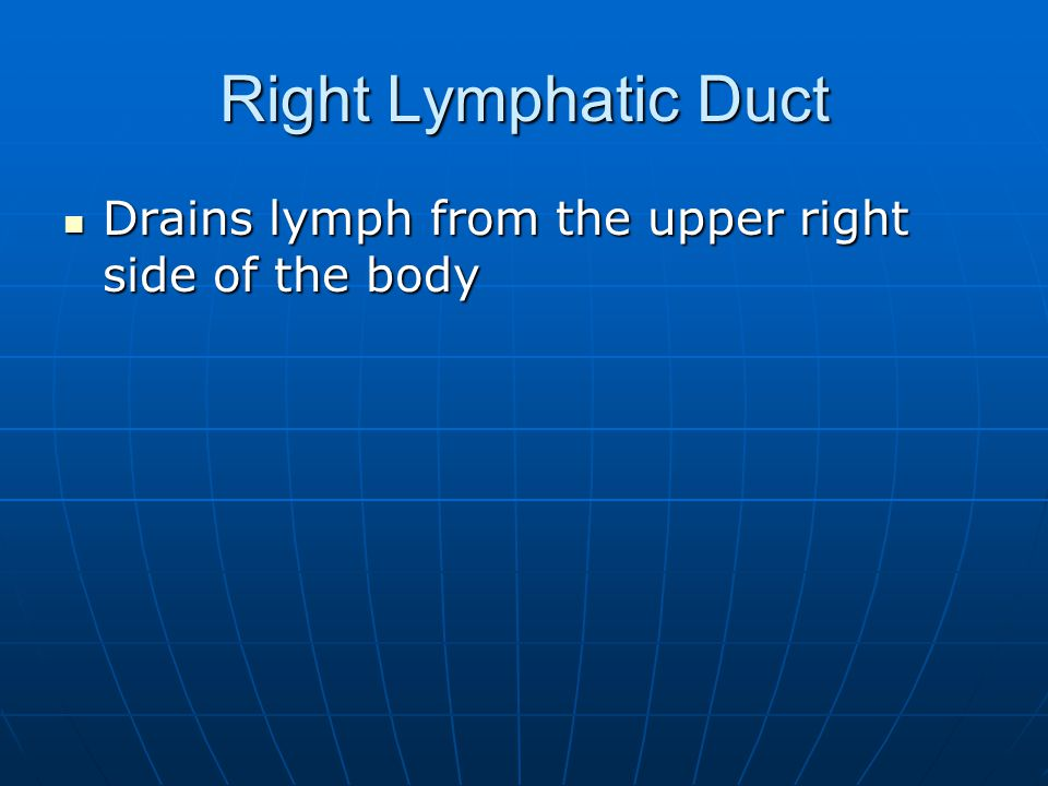 Right Lymphatic Duct Drains lymph from the upper right side of the body
