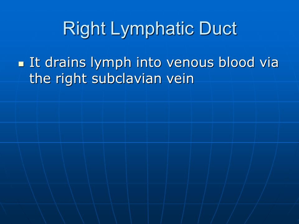 Right Lymphatic Duct It drains lymph into venous blood via the right subclavian vein
