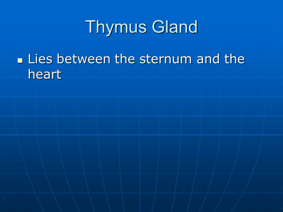 Thymus Gland Lies between the sternum and the heart