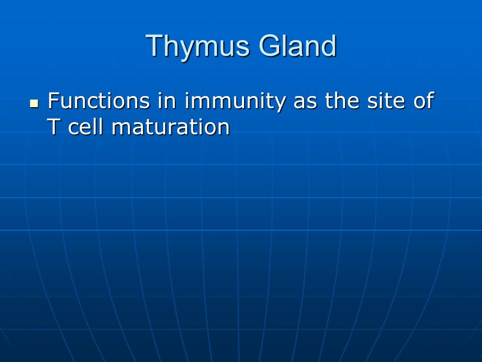 Thymus Gland Functions in immunity as the site of T cell maturation