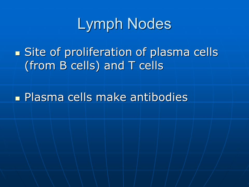 Lymph Nodes Site of proliferation of plasma cells (from B cells) and T cells.