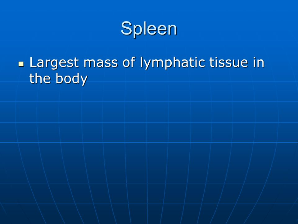 Spleen Largest mass of lymphatic tissue in the body