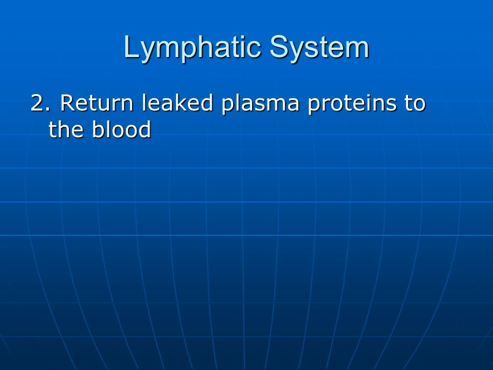 Lymphatic System 2. Return leaked plasma proteins to the blood