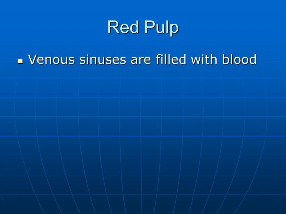 Red Pulp Venous sinuses are filled with blood