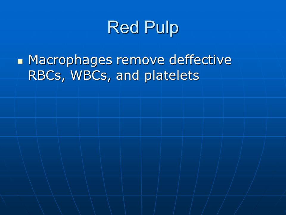 Red Pulp Macrophages remove deffective RBCs, WBCs, and platelets