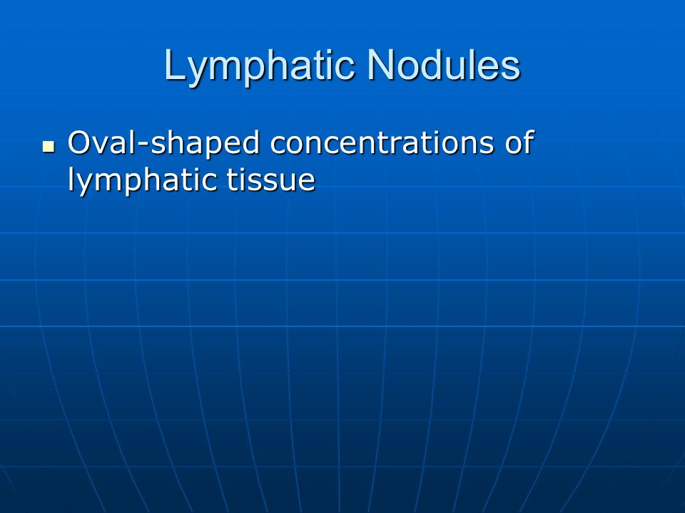 Lymphatic Nodules Oval-shaped concentrations of lymphatic tissue