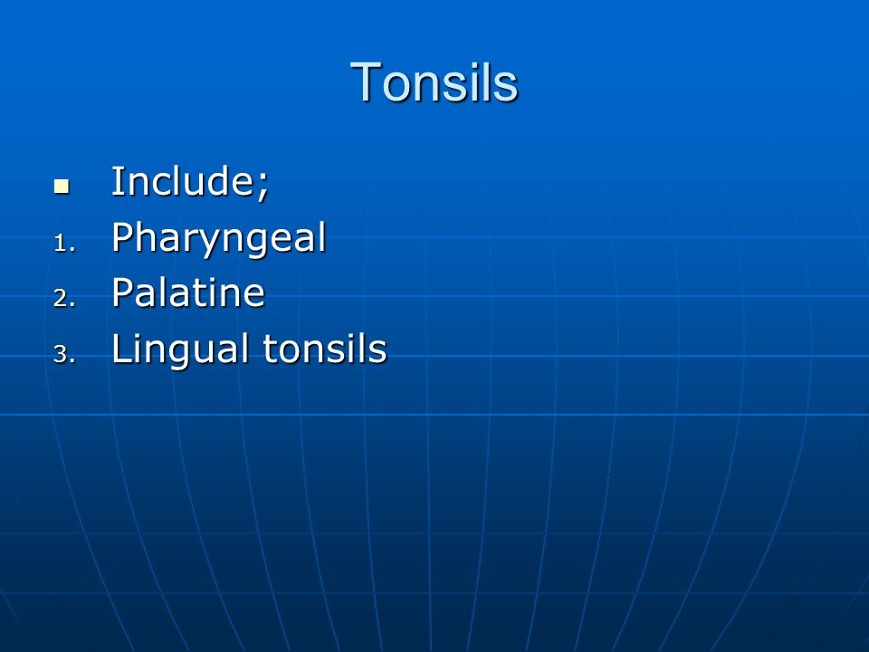 Tonsils Include; Pharyngeal Palatine Lingual tonsils