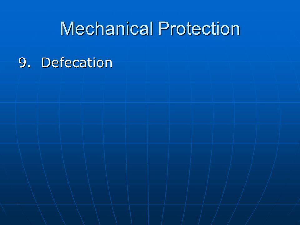 Mechanical Protection