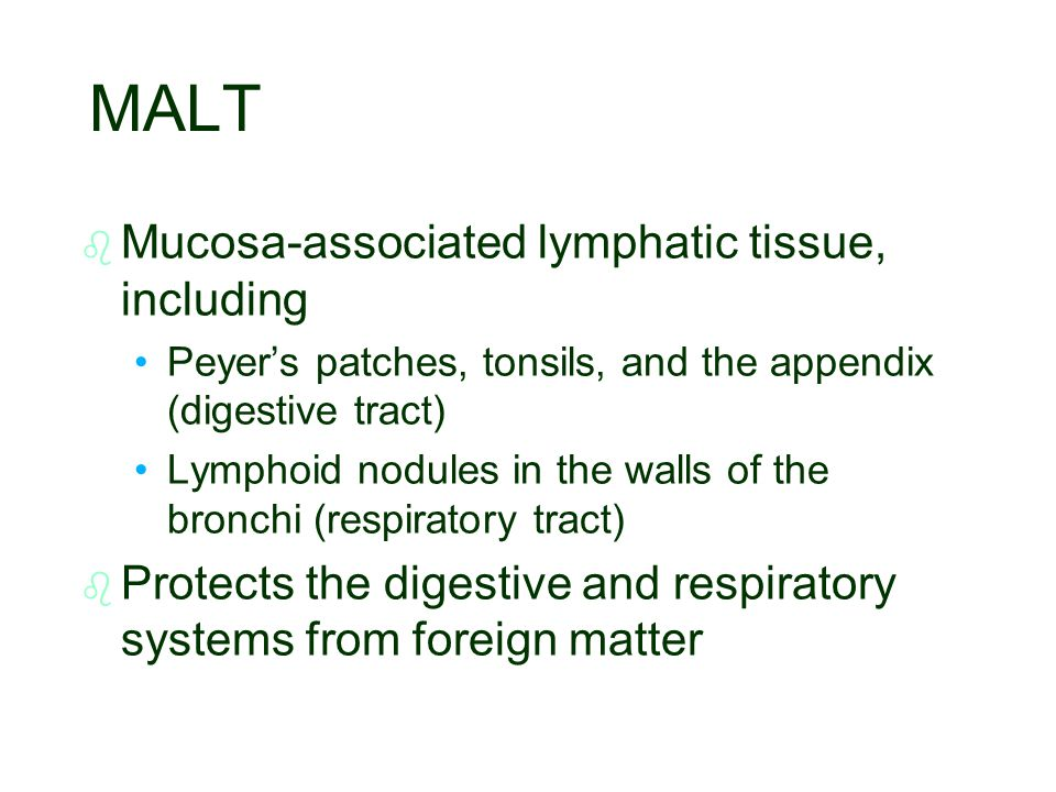 MALT Mucosa-associated lymphatic tissue, including