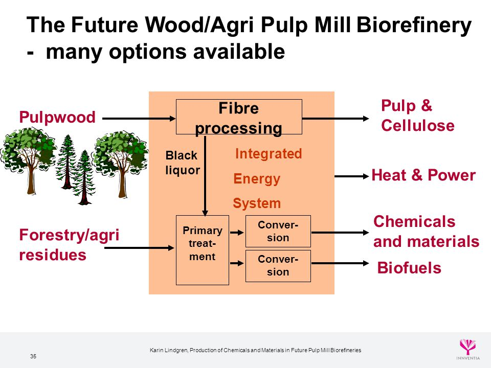 The Future Wood/Agri Pulp Mill Biorefinery - many options available