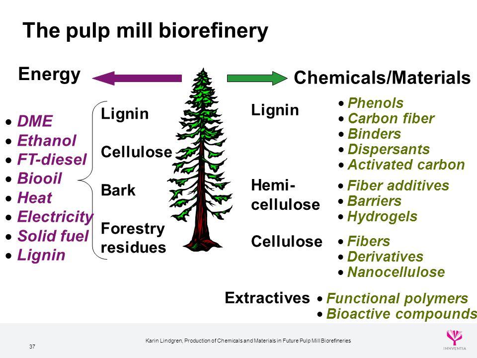 The pulp mill biorefinery