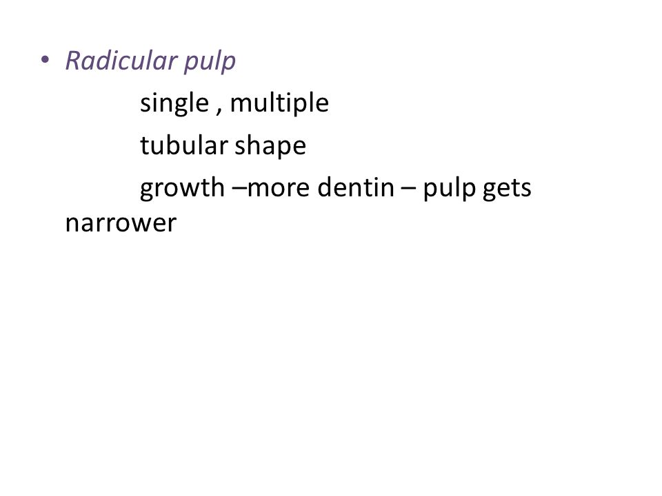 Radicular pulp single , multiple. tubular shape.