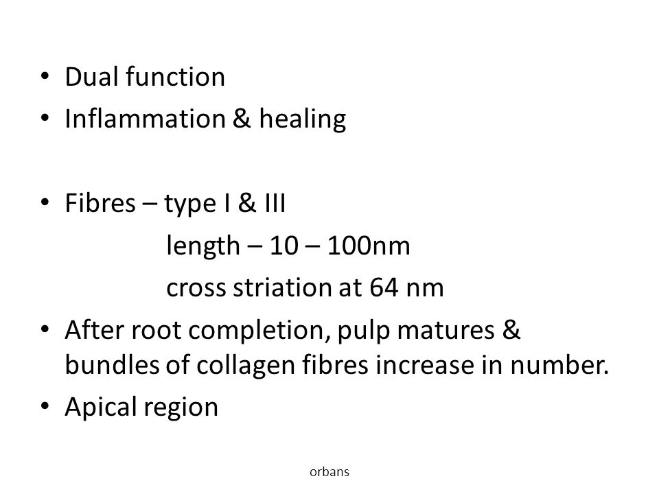 Inflammation & healing Fibres – type I & III length – 10 – 100nm