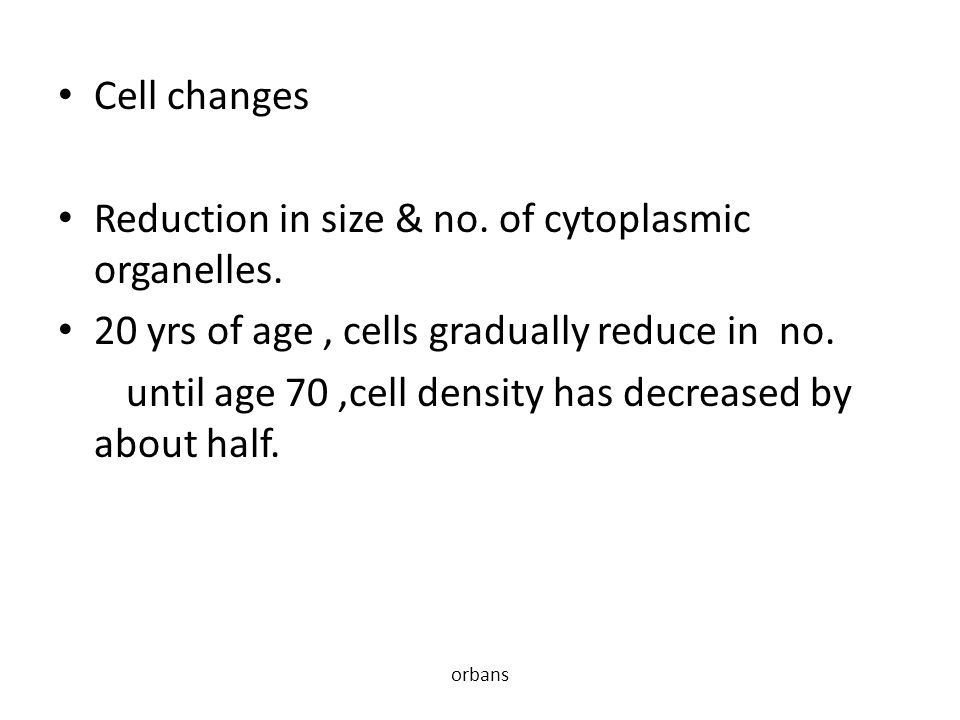 Reduction in size & no. of cytoplasmic organelles.