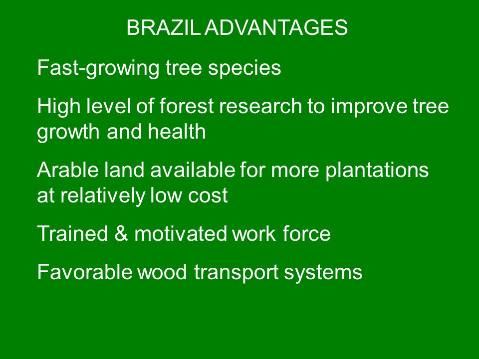 BRAZIL ADVANTAGES Fast-growing tree species. High level of forest research to improve tree growth and health.