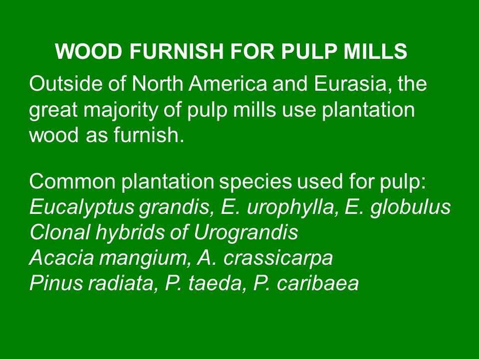 WOOD FURNISH FOR PULP MILLS