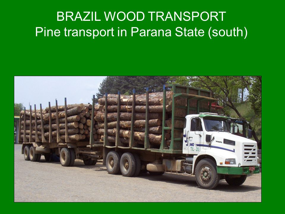 Pine transport in Parana State (south)