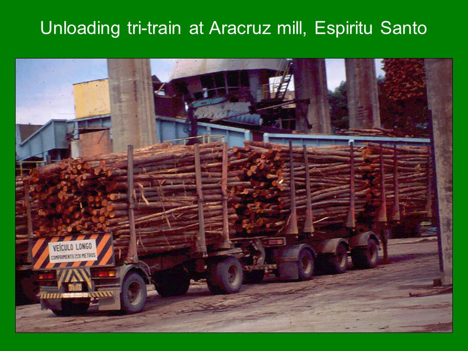 Unloading tri-train at Aracruz mill, Espiritu Santo