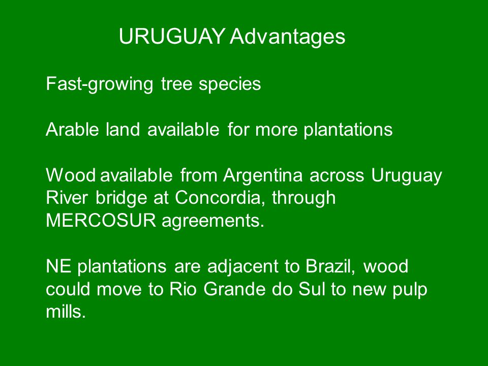 URUGUAY Advantages Fast-growing tree species