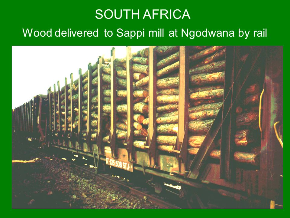 SOUTH AFRICA Wood delivered to Sappi mill at Ngodwana by rail