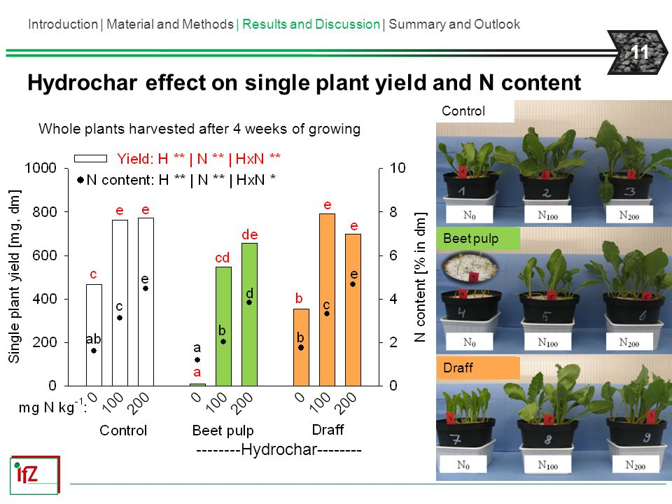 Hydrochar effect on single plant yield and N content
