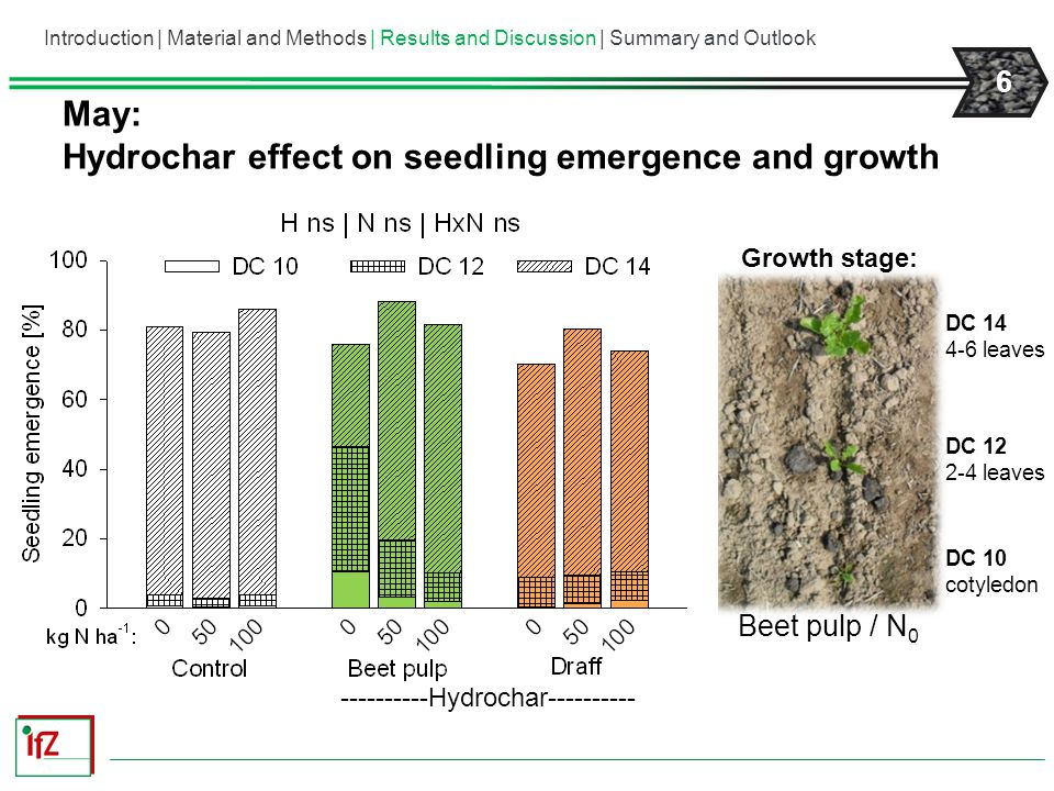 Hydrochar effect on seedling emergence and growth
