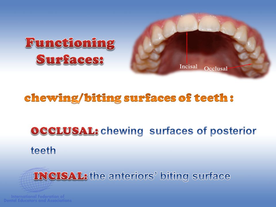 Functioning Surfaces: