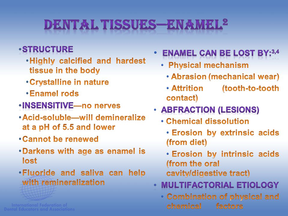Dental Tissues—Enamel2