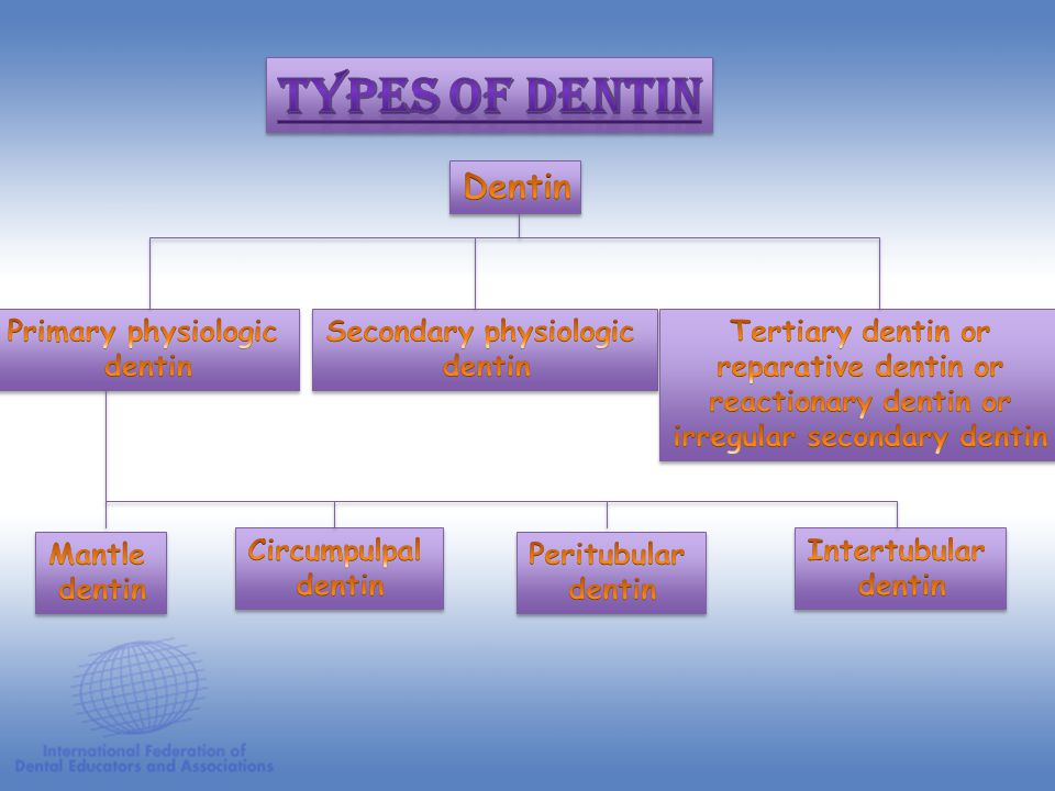 Secondary physiologic irregular secondary dentin