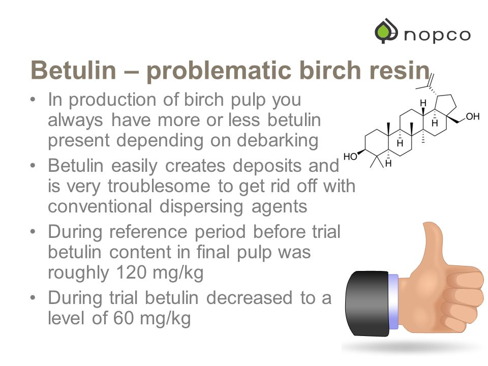 Betulin – problematic birch resin