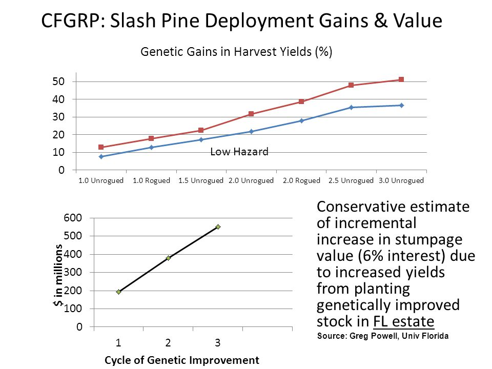 CFGRP: Slash Pine Deployment Gains & Value