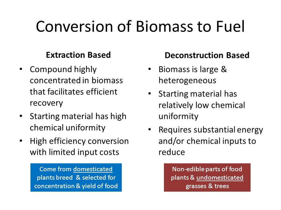 Conversion of Biomass to Fuel