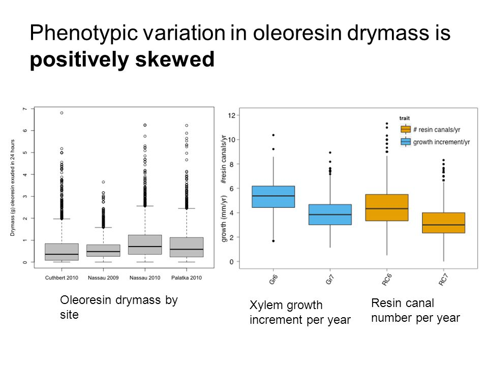 Phenotypic variation in oleoresin drymass is positively skewed