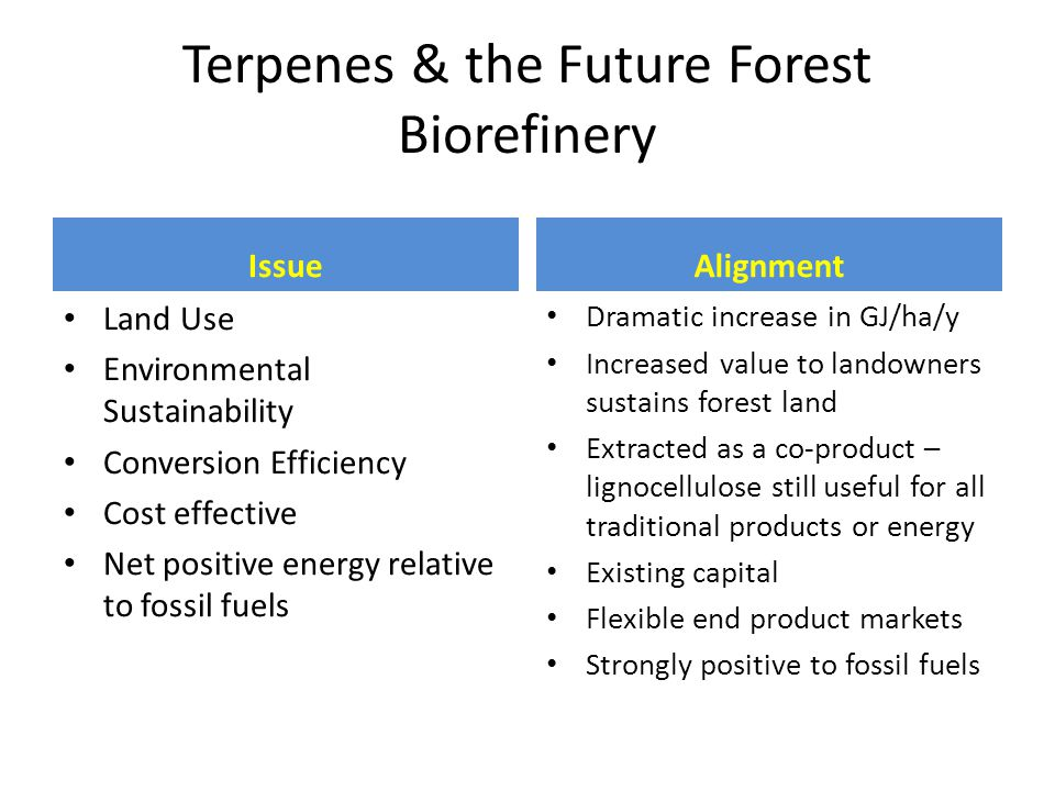 Terpenes & the Future Forest Biorefinery