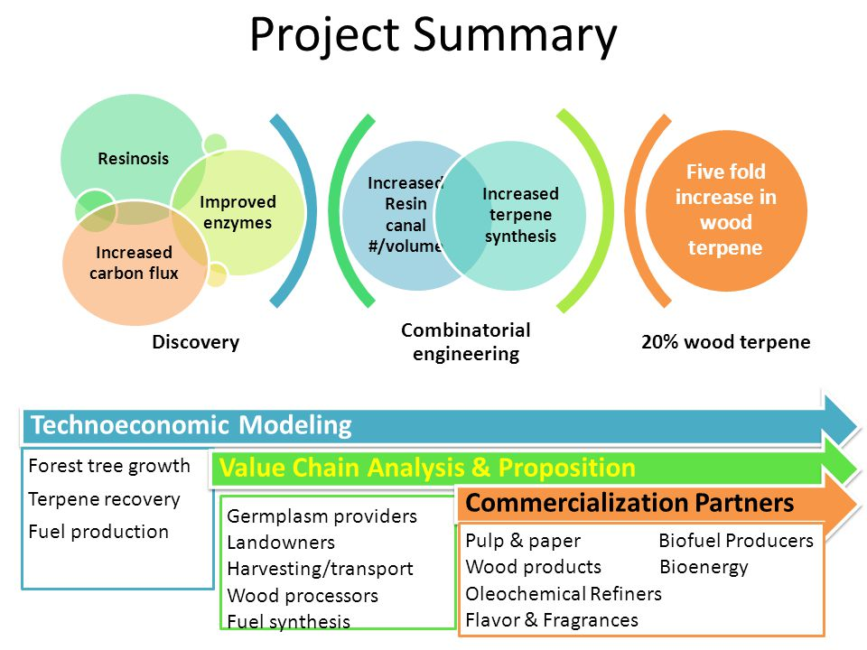 Project Summary Technoeconomic Modeling