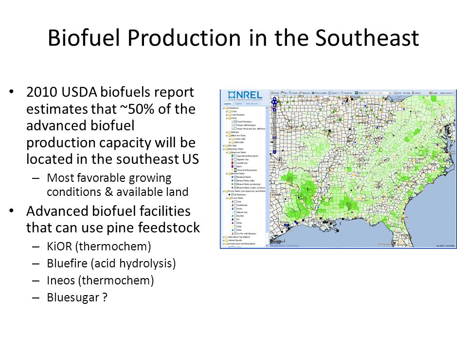 Biofuel Production in the Southeast
