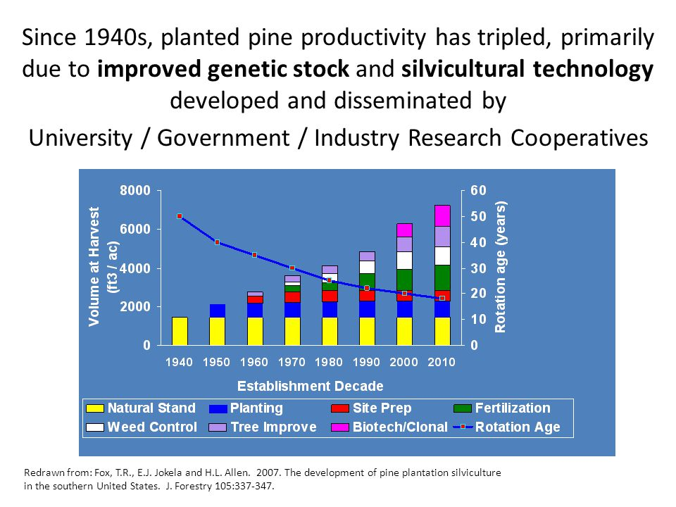 Since 1940s, planted pine productivity has tripled, primarily due to improved genetic stock and silvicultural technology developed and disseminated by University / Government / Industry Research Cooperatives